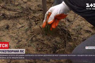 Новини України: у Херсонській області відновлюють ліси після пожеж
