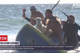 Новости мира: на Калифорнийском побережье мужчина вместе со своим козлом покоряли волны