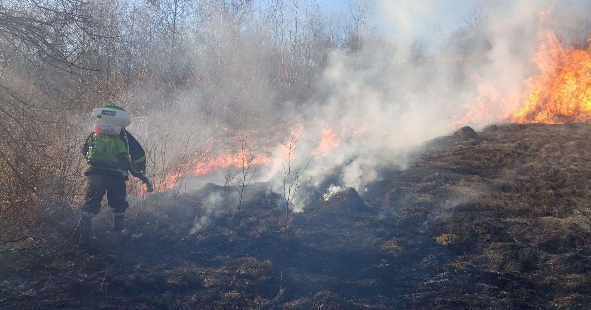 У Рівненській області чоловік палив сухостій і загинув