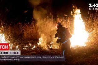 Новости Украины: начался сезон рукотворных пожаров