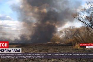 Новости Украины: в Киевской области выгорело 300 гектаров земли из-за поджога сухой травы