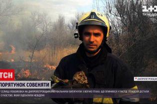 Новости Украины: в Днепропетровской области пожарные спасли совенка