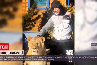 Новости Украины: украинские чиновники подали новые декларации о доходах - кто задекларировал льва