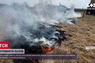Новости Украины: в селе Ровенской области во время поджога сухостоя чуть не сгорели дома