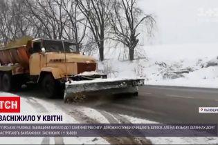 Новини України: у Львові та області випав квітневий сніг