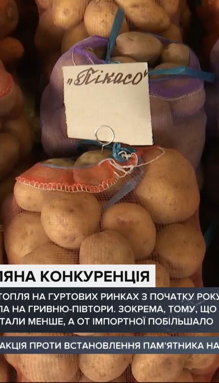 Чи можна зекономити, купуючи картоплю в роздріб на базарах та у супермаркетах