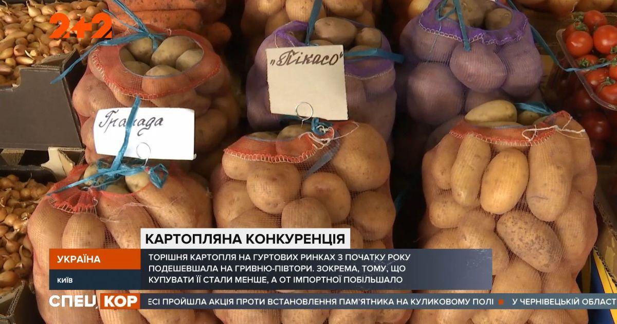 В Україні подешевшала картопля: що впливає на цінопад