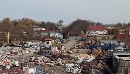 Бігають свині та лежать трупи тварин: під Києвом виявили сміттєзвалище площею один гектар (відео)