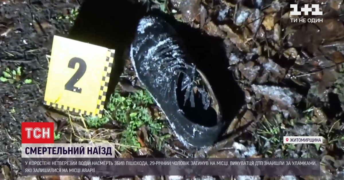 Збив і залишив помирати: у Житомирській області п'яний водій думав, що не розминувся зі стовпом