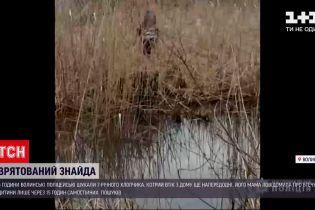 Новости Украины: волынские полицейские нашли обессиленного 7-летнего мальчика в болоте
