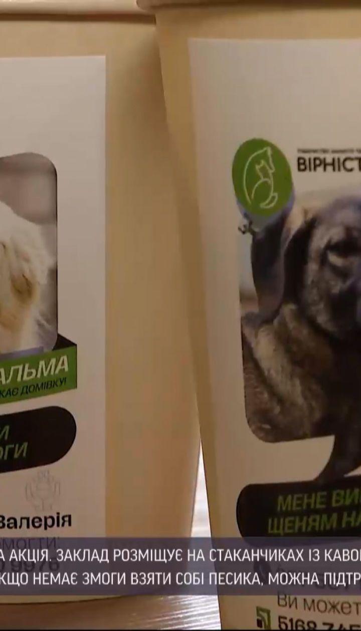 Новини України: в одній з дніпровських кав'ярень організували благодійну акцію