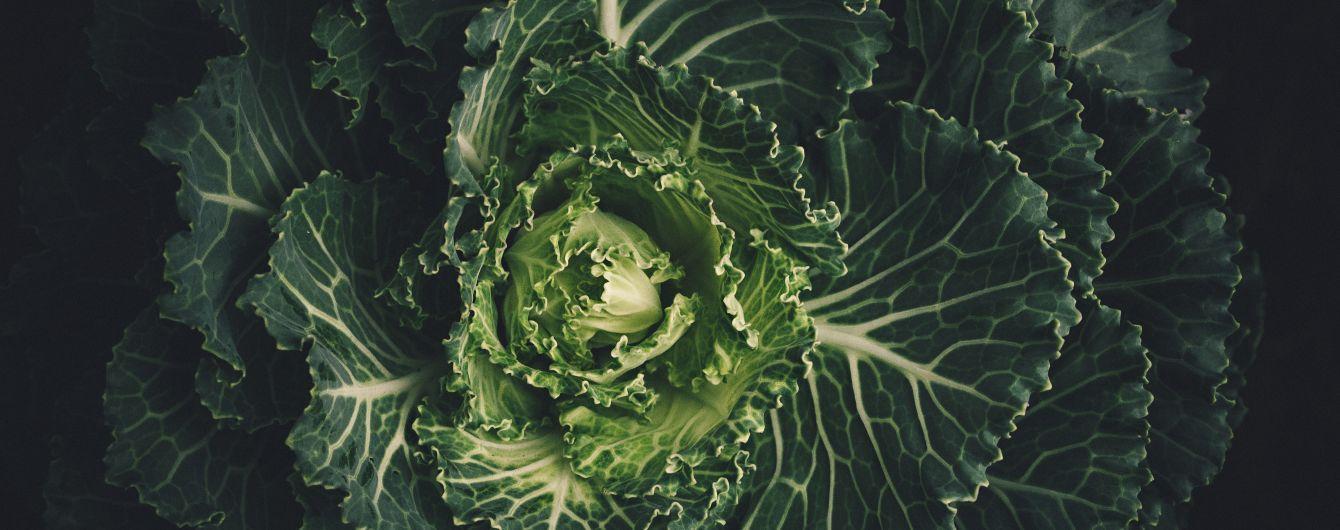 Капуста в Україні: які ціни на овочі та як приготувати нестандартний стейк