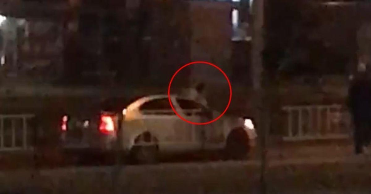 У Львові чоловік, якого розшукували за грабіж, під впливом наркотиків стрибав по автомобілях, які їхали дорогою