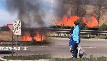 На Рівненщині невідомі підпалили сухостій поруч з АЗС