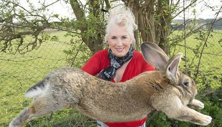 У колишньої моделі Playboy злодії викрали найбільшого в світі кроля