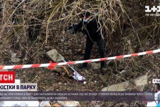 Новости Украины: в львовском парке дети нашли человеческие кости