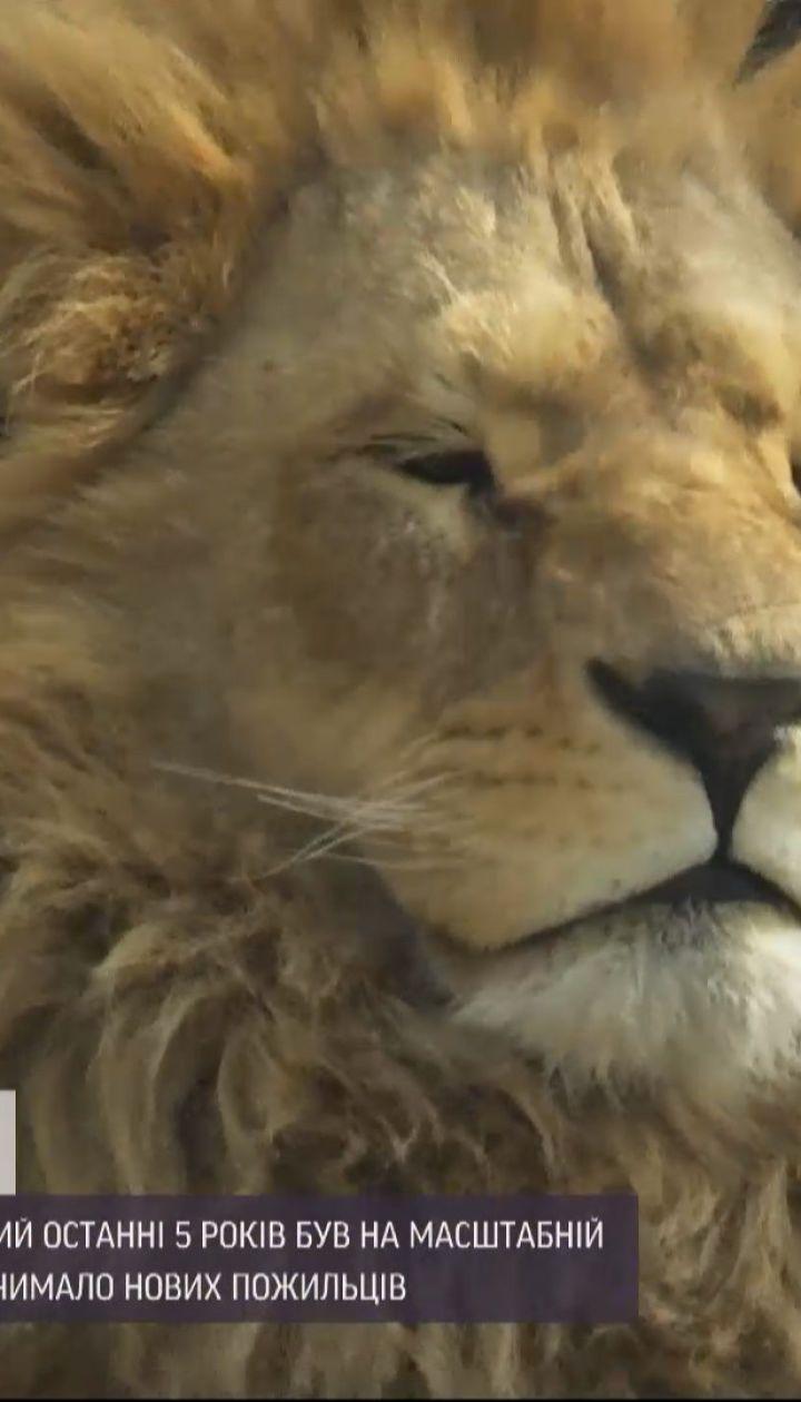 Новини України: у Харкові відкриють один із найстаріших українських зоопарків після 5-річного ремонту