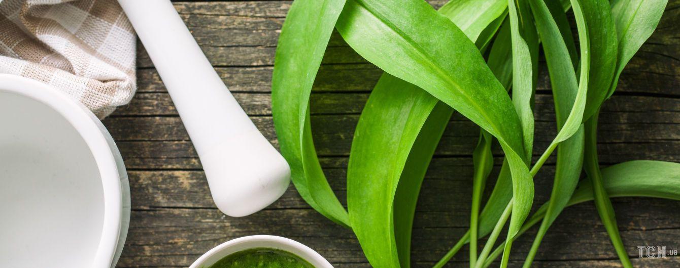 Творожные рулетики из черемши: эффектное блюдо из весенней зелени