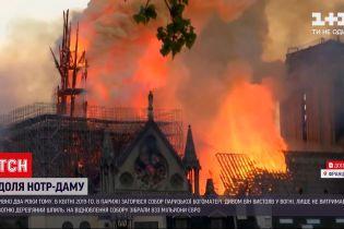 Новости мира: Эммануэль Макрон пришел осмотреть, как продвигаются работы по восстановлению Нотр-Дама