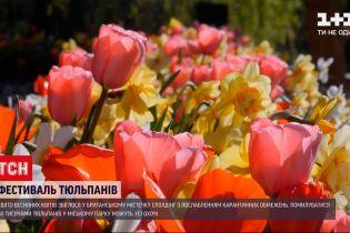 Новости мира: в Британии открытия знаменитого фестиваля тюльпанов совпало с ослаблением ограничений