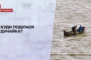 Новости недели: куда делась легендарная дунайка и чем уникальна наша украинская сельдь