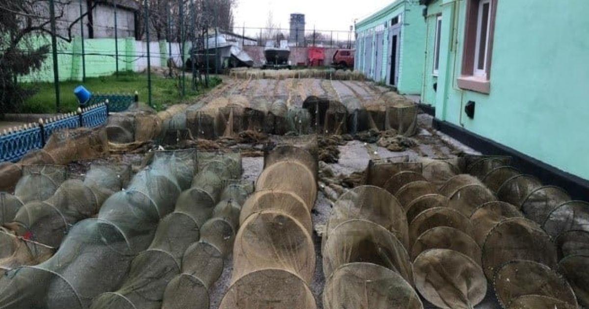 Креветки та червонокнижні краби: під Херсоном випустили на волю незаконний улов на 2 млн гривень