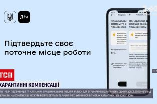 Новости Украины: 100 тысяч ФЛП уже подали заявки на получение карантинной помощи от государства