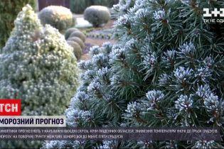Новини України: синоптики прогнозують заморозки до -5