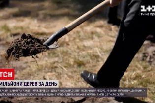 Новини України: в країні за день висадили понад 4 мільйони дерев