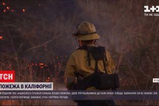 Новини світу: неподалік Лос-Анджелеса рятувальники зі спецтехнікою гасять лісову пожежу