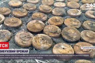 Новости Украины: в Днепропетровской области извлекли из земли почти 4 сотни боеприпасов