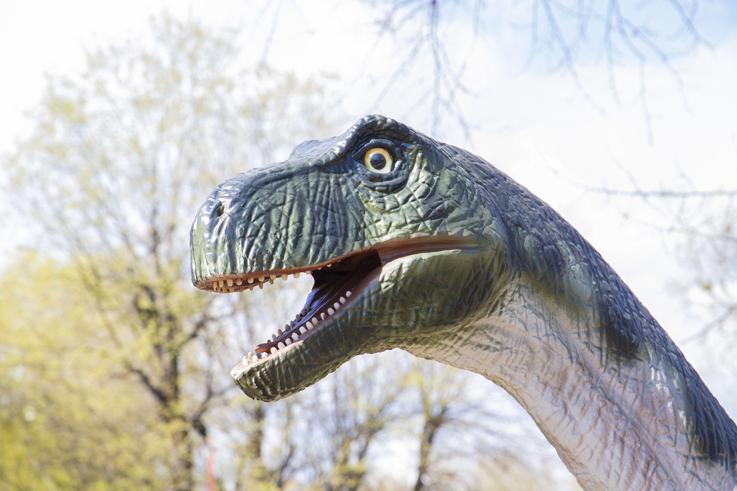 парк динозаврів у Києві_35