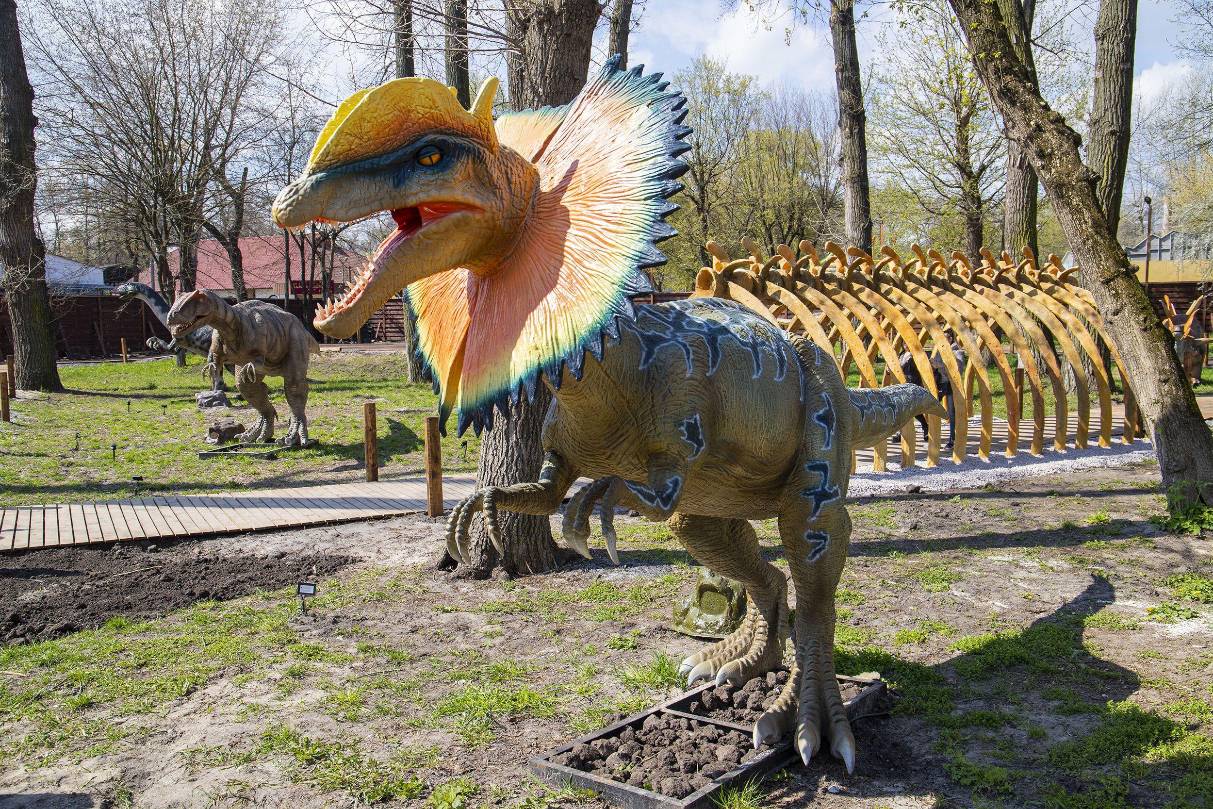парк динозаврів у Києві_34