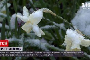Погода в Україні: рятувальники попереджають про рвучкий вітер до 20 метрів за секунду