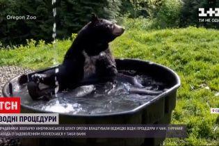 Новини світу: у зоопарку США зафільмували, як ведмідь приймає водні процедури