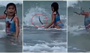 Американка случайно записала видео, как ее 6-летняя дочь спасается от акулы