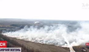 У Полтавській області через горіння сухостоїв загинула 72-річна жінка