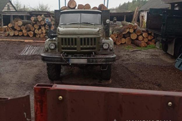 Пів мільйона збитків: у Сумській області працівники лісгоспу незаконно вирубували дуби
