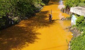 У Києві з річки Либідь, яка стала отруйно-жовтою, взяли проби води: що відомо