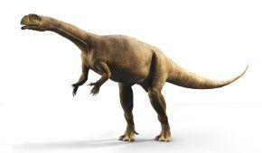 Ученые обнаружили динозавров, которые росли как деревья