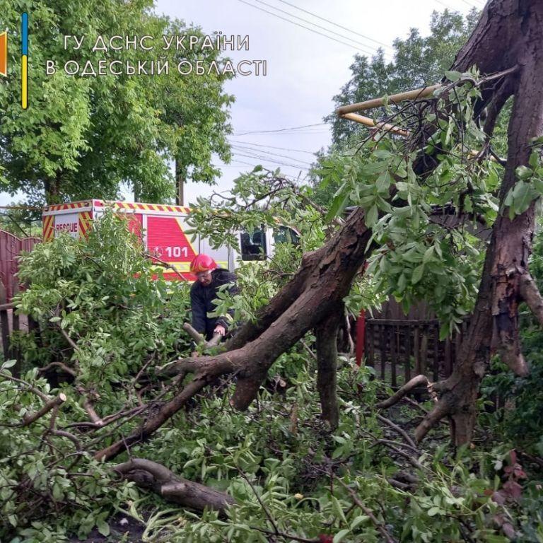 Залитые дома, поваленные деревья, разбитые авто: как Одесса приходит в себя после ночного армагеддона