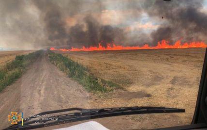 Черный дым над пшеничными полями: в Днепропетровской области возник крупный пожар