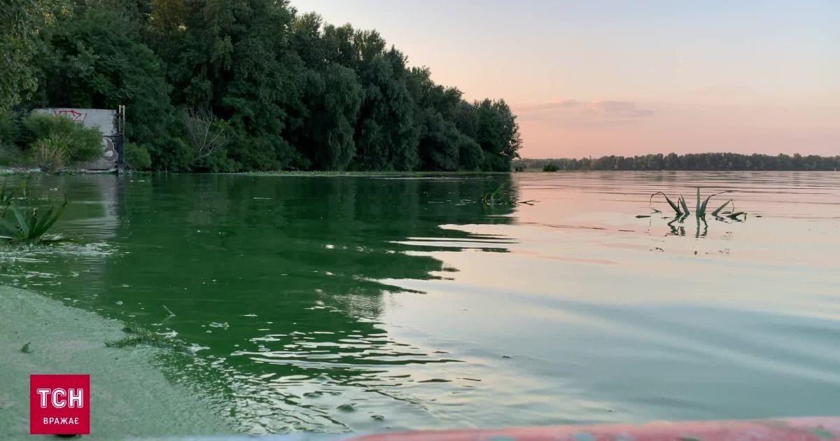 Новини Дніпра: як влітку виглядає річка та центральна міська набережна