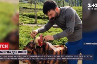 Новости мира: турецкий парикмахер Юнус Гунерих во время локдауна подстриг своего петуха
