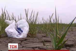 Успішний експеримент: кияни тоннами здають поліетиленові пакети на переробку