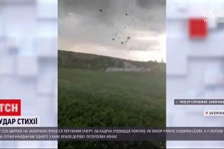 Погода в Україні: у Запорізькій області пронісся потужний смерч, а у Полтаві вітер повалив дерево