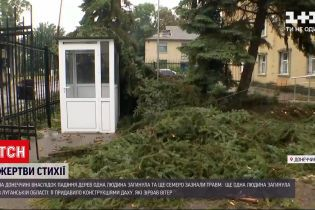 Новини України: через негоду на Донбасі загинули двоє людей