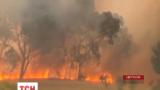 Ліси на півдні Австралії палають