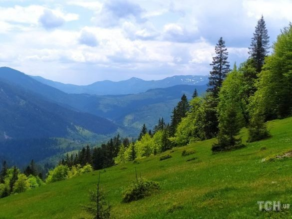 Гора Озерна, фото: Ольга Кузьменко / ©