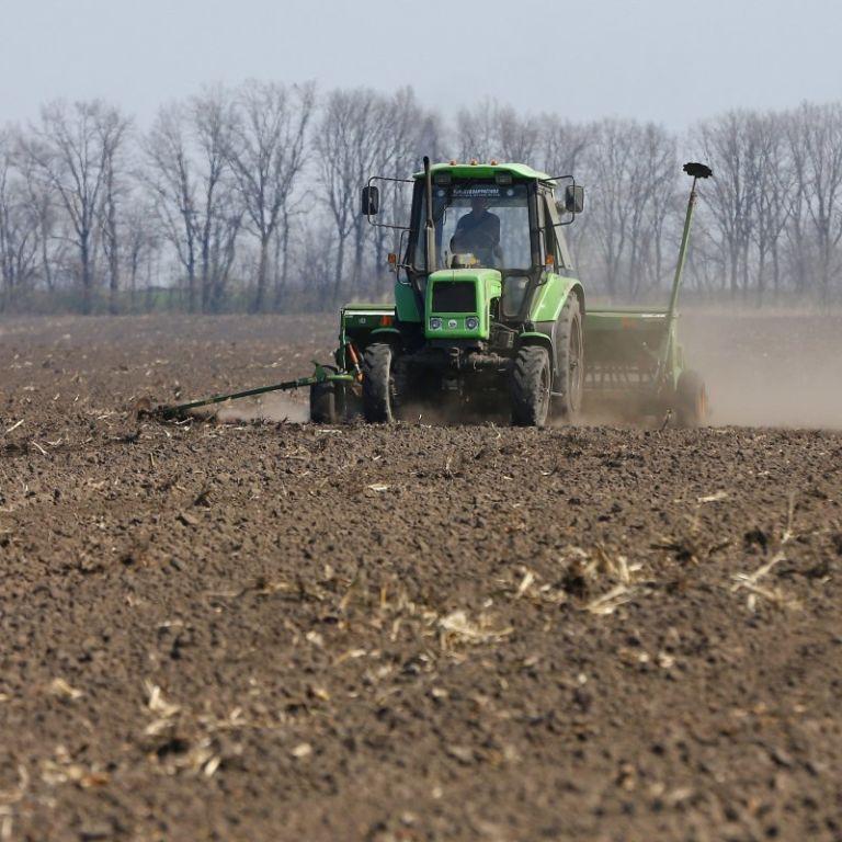 Не собрали урожай: за несколько недель до Нового года часть зерновых до сих пор остается на полях